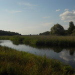 Piękno Biebrzy - Kamienna Stara